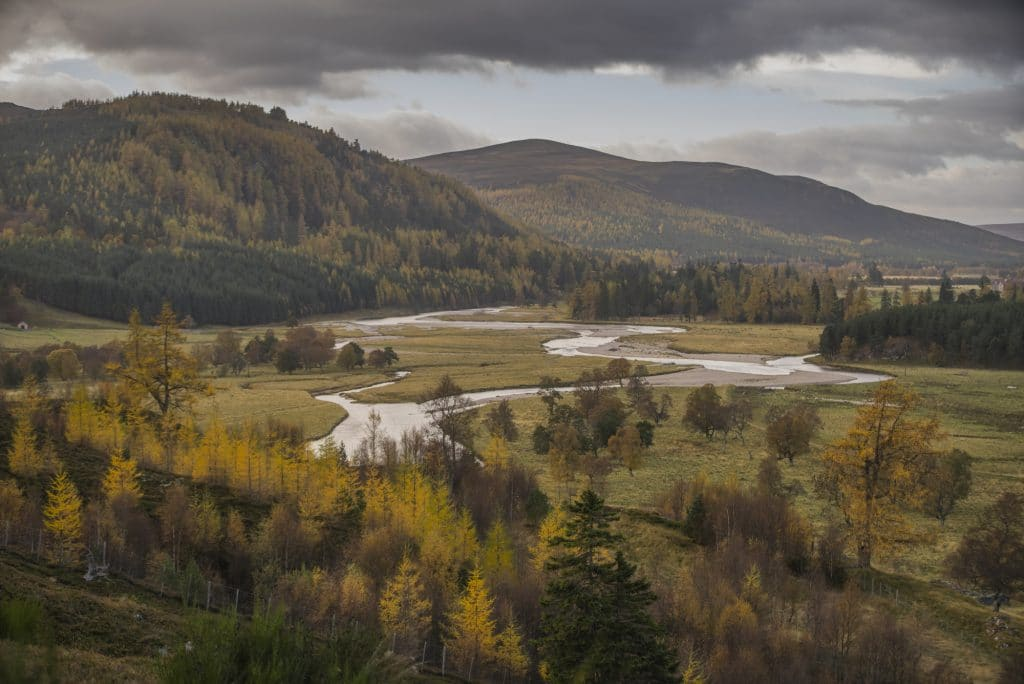 The Mars lodge estate, Braemar, Royal Deeside in the Cairngorms National Park.